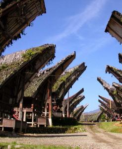 South Sulawesi Highlight Roundtrip Tour
